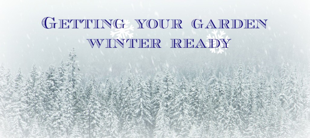 Getting your garden winter ready
