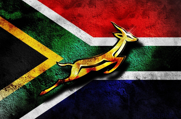 Springboks Supporter's World Cup Party