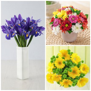 Beautiful Spring flowers for Spring Day
