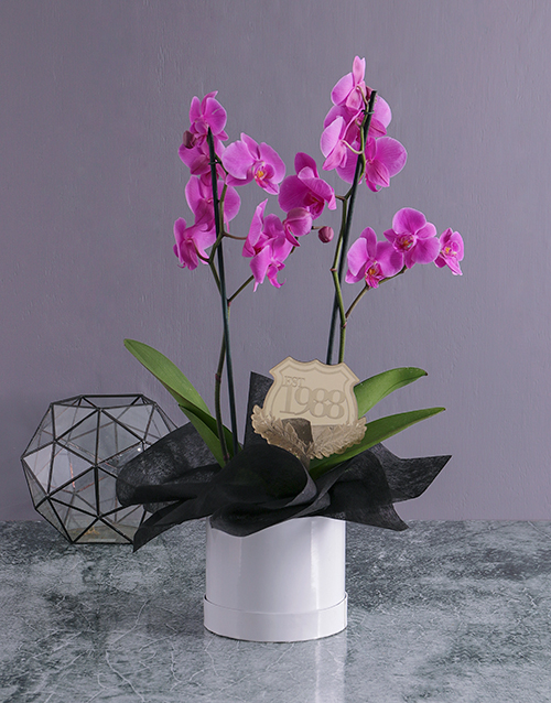 Find plants gifts for everyone