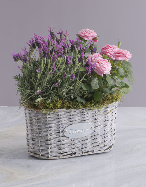 Grandparents' Day Flowers